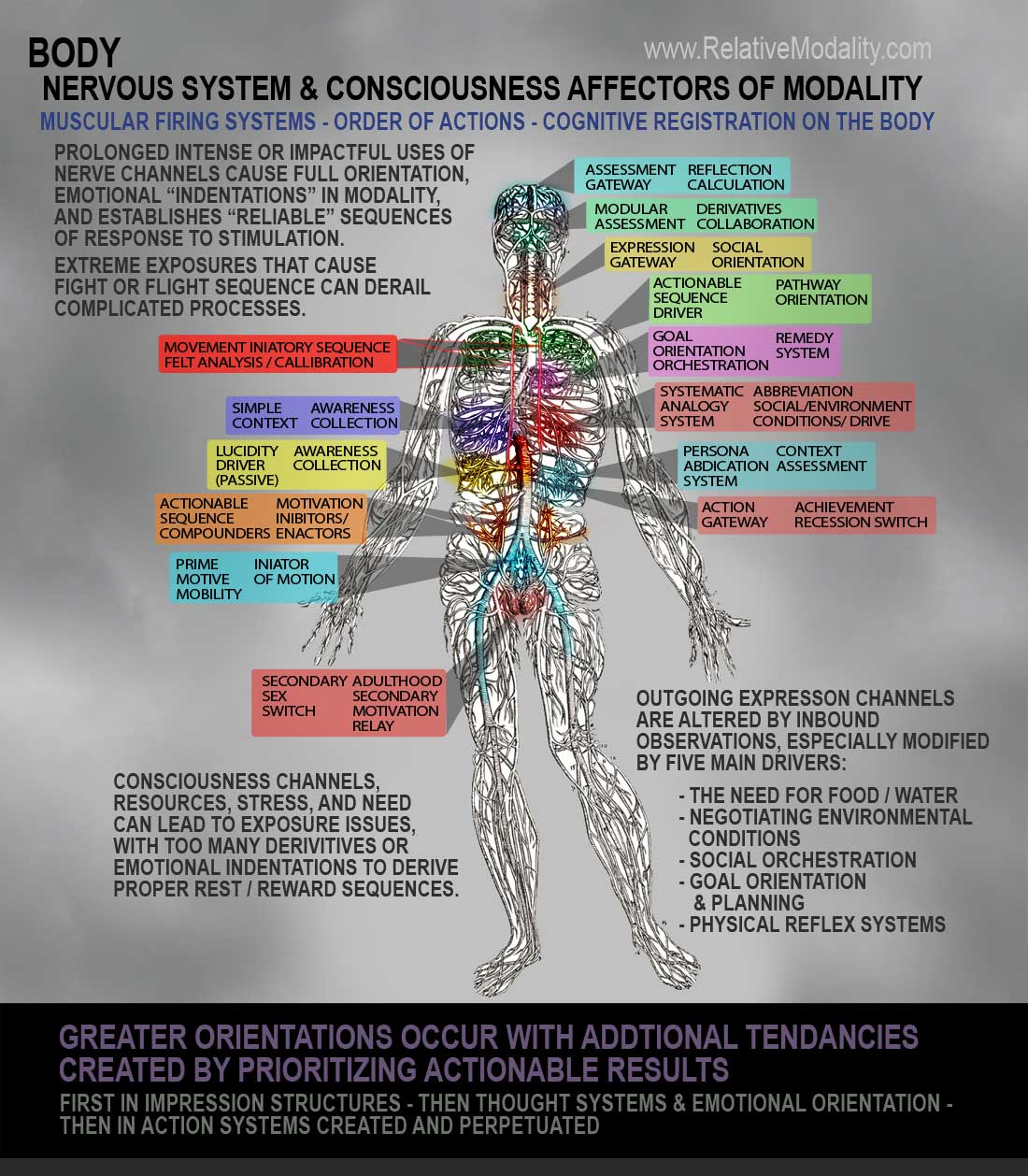 Body Relative Modality Relay Switch Animation Human Nervous System With Focal Points Of Activity Outlined These Center Around